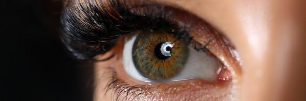 Olho direito colorido feminino verde bonito com close-up de extensões de cílios