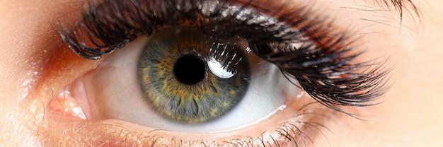 Olho direito colorido feminino verde bonito com extensões de cílios