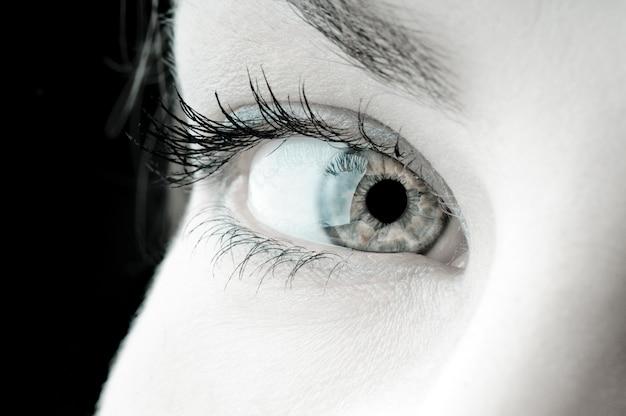Olho fêmea bonito natural, direito um