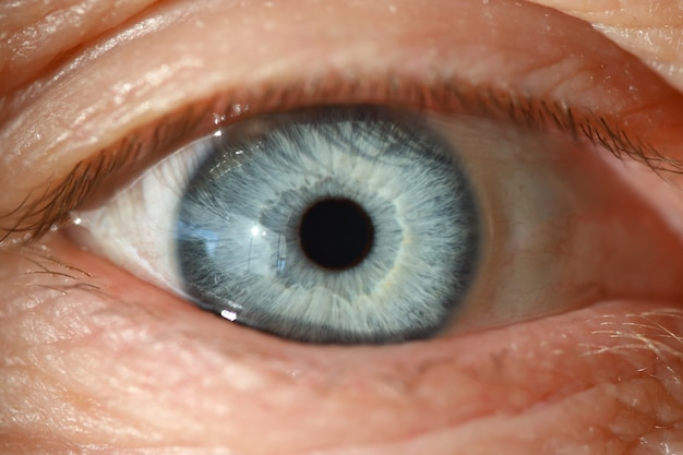 Olho humano azul com pupila preta closeup. conceito de diagnóstico de visão computacional