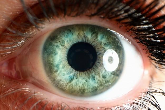 Olho humano com cílios naturais olhando direto