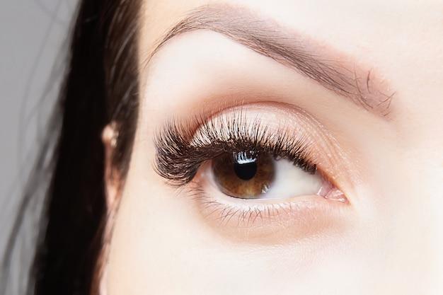 Olho marrom com belos cílios longos close-up, macro