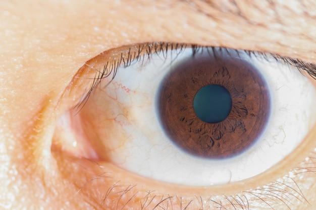 Olho marrom de close-up jovem asiático