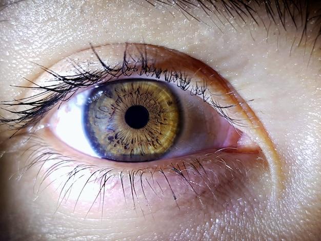 Olho profundo do ser humano