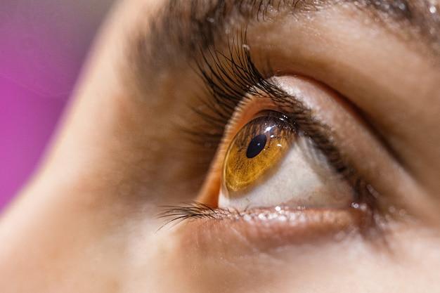 Olhos castanhos avelã