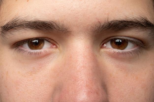 Olhos cor de mel de menino com sobrancelhas pretas desgrenhadas