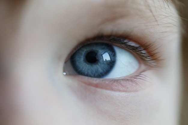 Olhos de close-up criança alegre, olhar pequeno para o mundo
