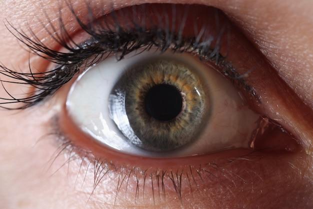 Olhos de mulher com maquiagem definitiva nas pálpebras