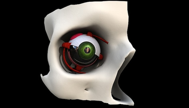 Olhos vêem cabeça ótica visão olho percebendo