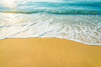 Onda de praia do mar