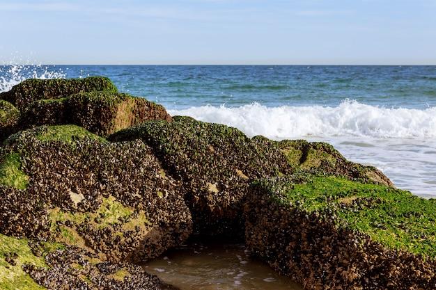 Onda do mar batendo nas rochas com spray e espuma