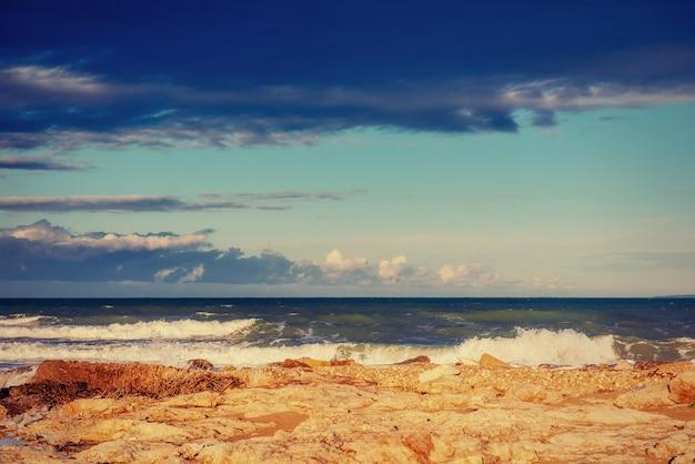 Ondas na paisagem do mar