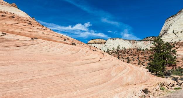 Ondas rochosas rosadas no parque nacional de zion, eua