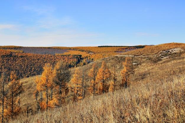 Opinião da paisagem outonal