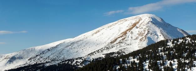 Opinião do panorama da montanha de petros do inverno (ucrânia, mt dos cárpatos). com caminho abaixo.