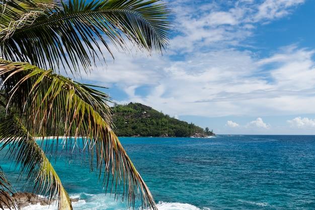 Opinião verde bonita da lagoa na ilha de seychelles.