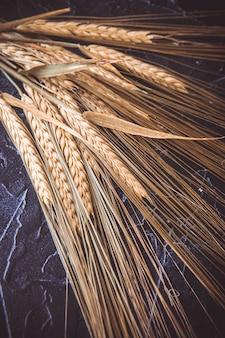 Orelhas de trigo verde verde