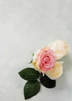 Ornamento floral de vista superior