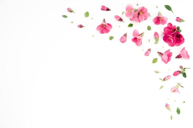 Ornamentos florais