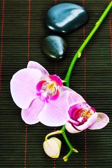 Orquídea com pedras na esteira de bambu