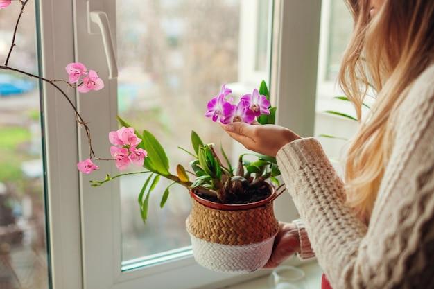 Orquídea dendrobium e buganvílias. mulher cuidando de terrenos em casa. mulher segurando o pote na cesta com flores.