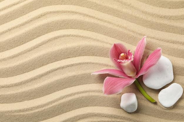 Orquídea e pedras no fundo da areia, vista superior. conceito zen