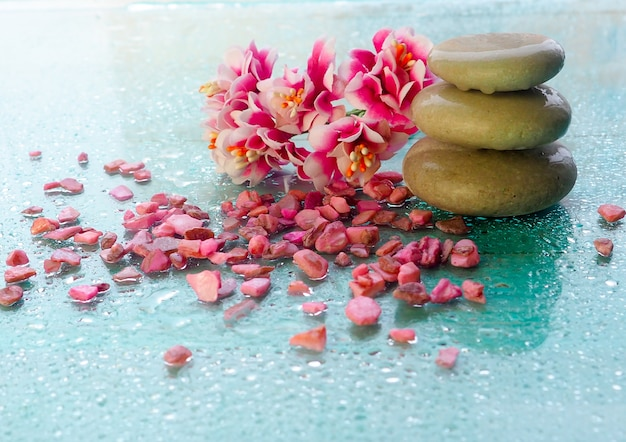 Orquídea rosa spa com pedras de massagem
