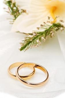 Orquídeas brancas e anéis de casamento