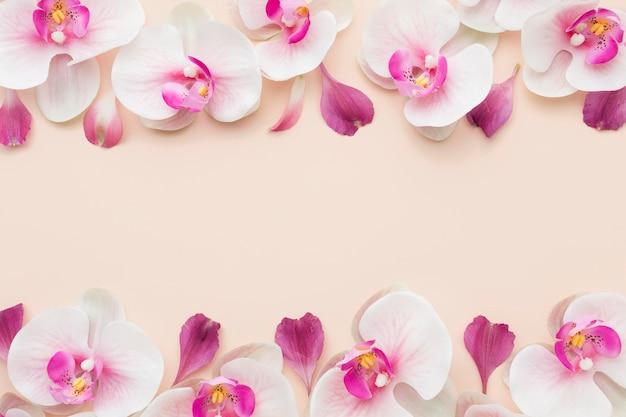 Orquídeas cor de rosa planas com cópia-espaço