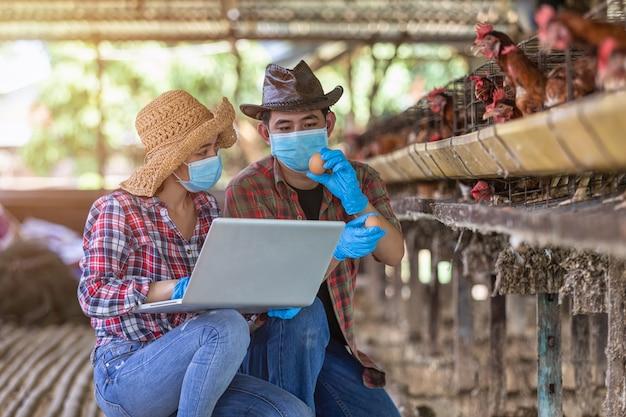 Os agricultores asiáticos inspecionam e registram os dados de qualidade dos ovos de galinha usando um laptop na granja de ovos.