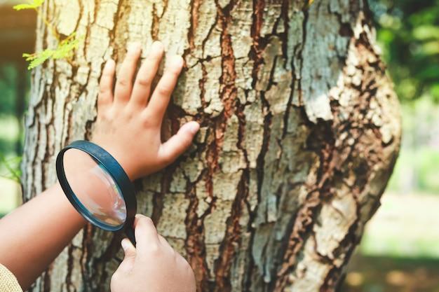 Os alunos seguram uma lupa para estudar, aprender a natureza.