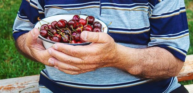 Os avós alimentam a criança com cerejas. foco seletivo.