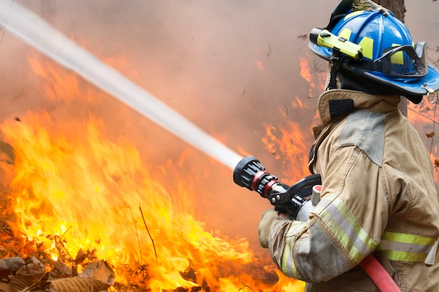 Os bombeiros lutam contra um incêndio florestal