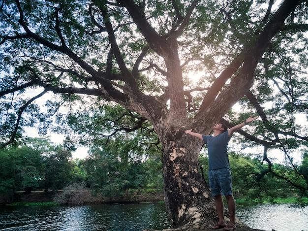 Os braços asiáticos do homem da liberdade levantaram feliz o ar fresco com árvore grande e natureza verde.