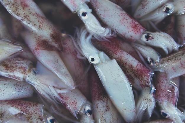 Os calamares crus frescos vendem no mercado local fresco.