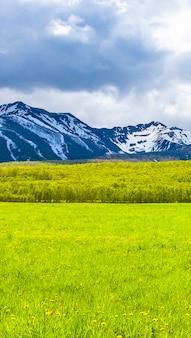 Os campos verdes na frente de montanhas de neve na península de kamchatka