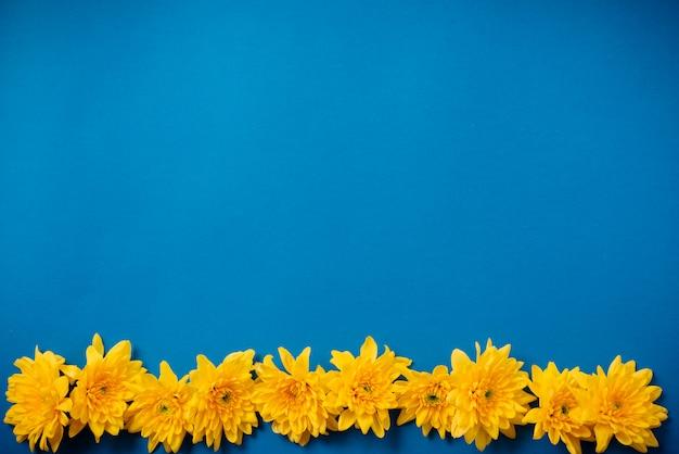 Os crisântemos alaranjados bonitos encontram-se em uma tabela azul.