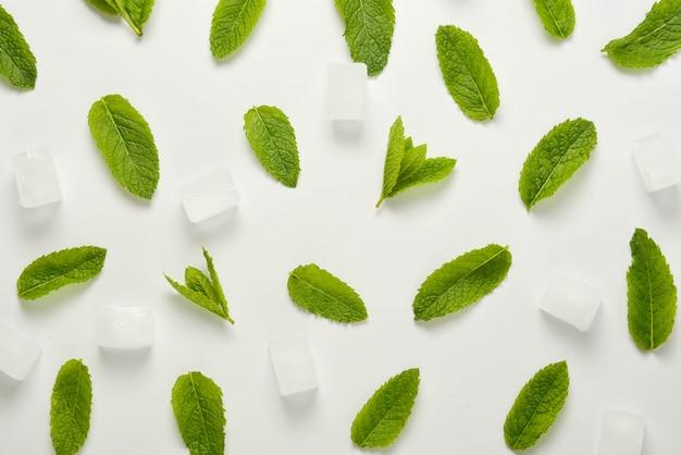 Os cubos de gelo com folhas de hortelã colocam o plano, isolado no branco.