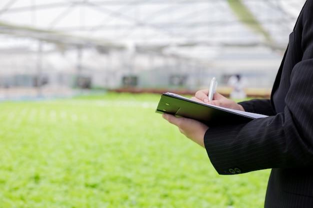 Os empresários examinam e registram os relatórios de qualidade de vegetais orgânicos.