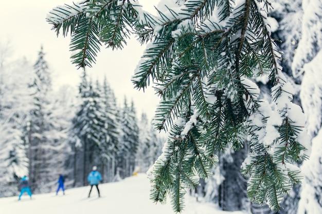 Os esquiadores descem a encosta da montanha