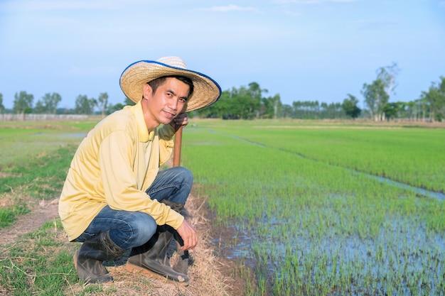 Os fazendeiros asiáticos usam camisetas amarelas sentados na fazenda verde.