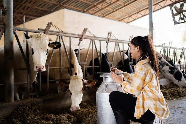 Os fazendeiros estão registrando detalhes de cada vaca da fazenda.