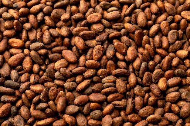 Os feijões de cacau aromáticos como o fundo, os feijões de cacau e o cacau frutificam em de madeira.