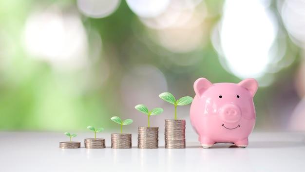 Os gráficos de moedas mostram o crescimento financeiro e o plantio de árvores em uma pilha de dinheiro, incluindo cofrinhos, ideias para economizar dinheiro e crescimento financeiro.