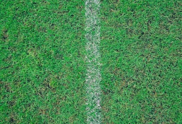 Os gramados verdes esvaziam o contexto.