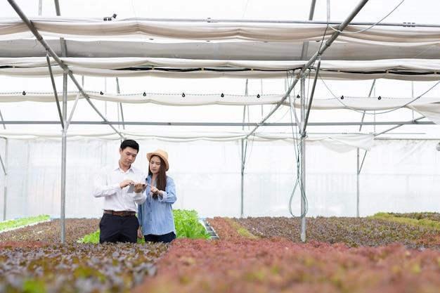 Os inspetores do homem inspecionam e registram a qualidade dos vegetais orgânicos com as agricultoras fornecendo orientação.