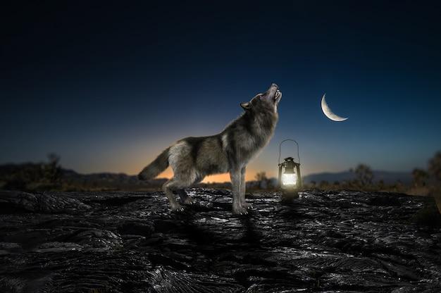 Os lobos uivam e meia-lua em alta resolução à noite, vida selvagem, natureza, paisagem