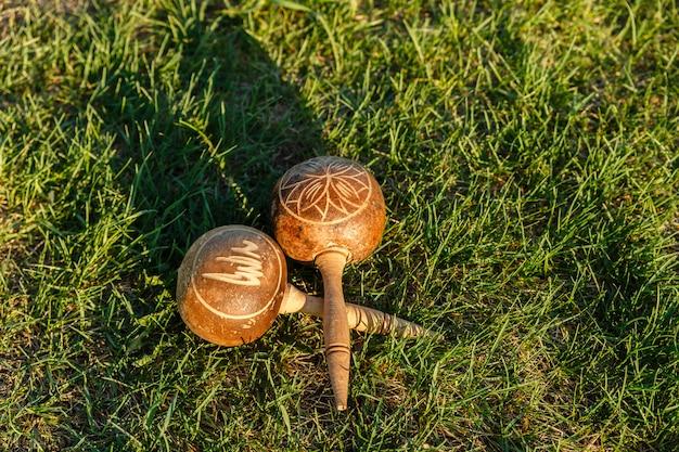 Os maracas cubanos encontram-se na grama verde.