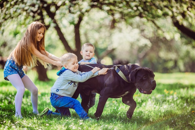Os meninos ang menina em pé perto de cão no parque