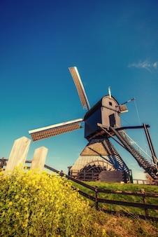 Os moinhos de vento holandeses velhos saltam do canal em roterdã. holanda.